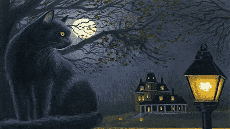 black-cat-1.png